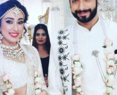 Naagin 5: Veer to marry Priyamvada Kant's character in the show?