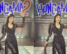 Shilpa Shetty to pay an ode to 'OG queen Helen' in Hungama 2? Her boomerang video says so
