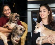 Madhuri Dixit's latest post proves she is true 'puppy lover'