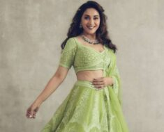 Madhuri Dixit asks fans to 'go green' by sharing beautiful pictures in traditional attire