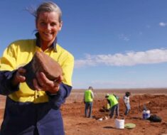 98-Million-Year Old Dinosaur Fossil Found in Australia, Scientists Say Could Be New Species
